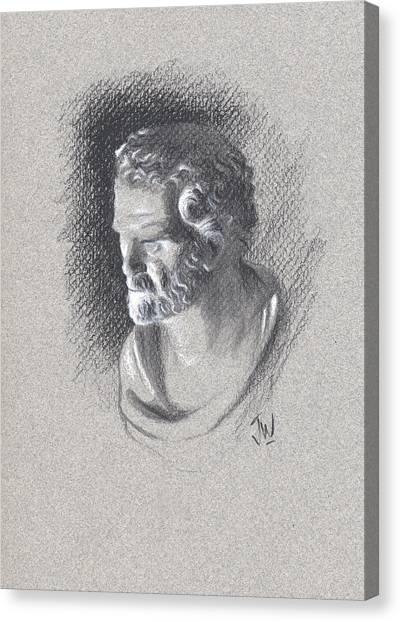 Bust 473 Canvas Print