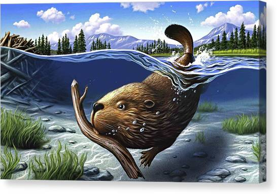 Beavers Canvas Print - Busy Beaver by Jerry LoFaro