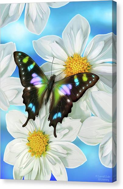 Songbirds Canvas Print - Butterfly 2 by JQ Licensing