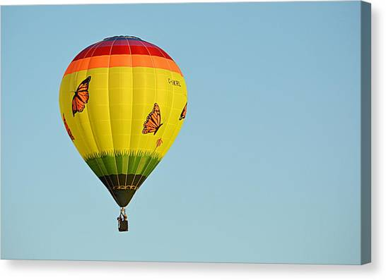 Canvas Print featuring the photograph Butterfly Designs by AJ Schibig