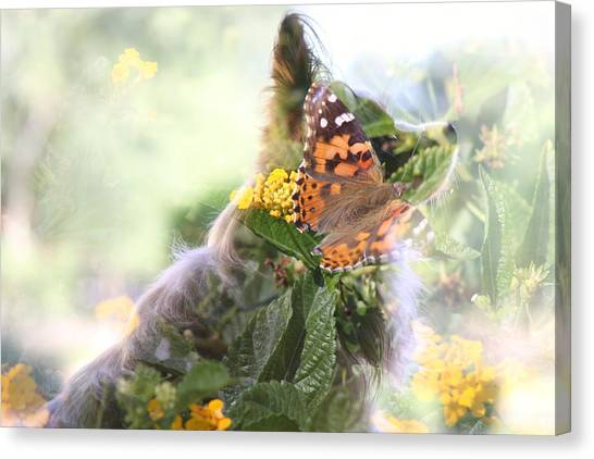 Butterfly Dog Canvas Print