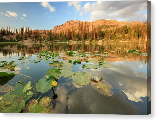 Uinta Canvas Print - Butterfly Lake by Johnny Adolphson