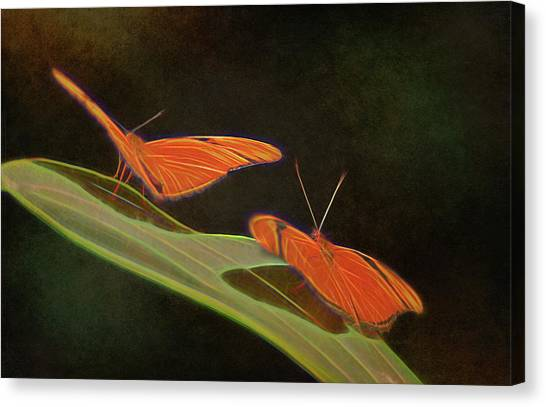 Butterfly Love 1a Canvas Print