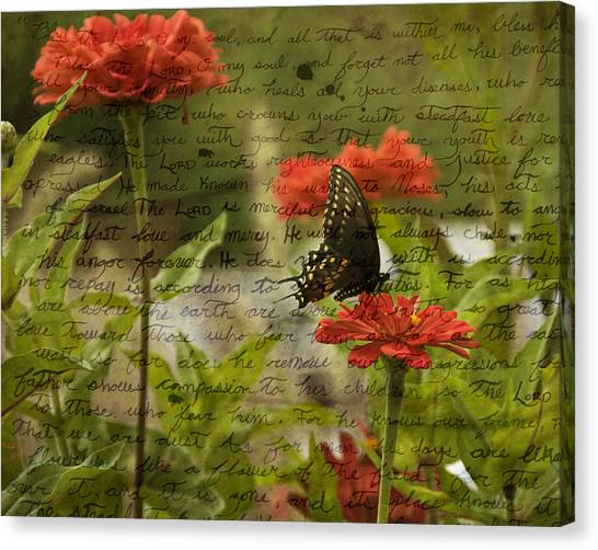 Butterfly Notes Canvas Print