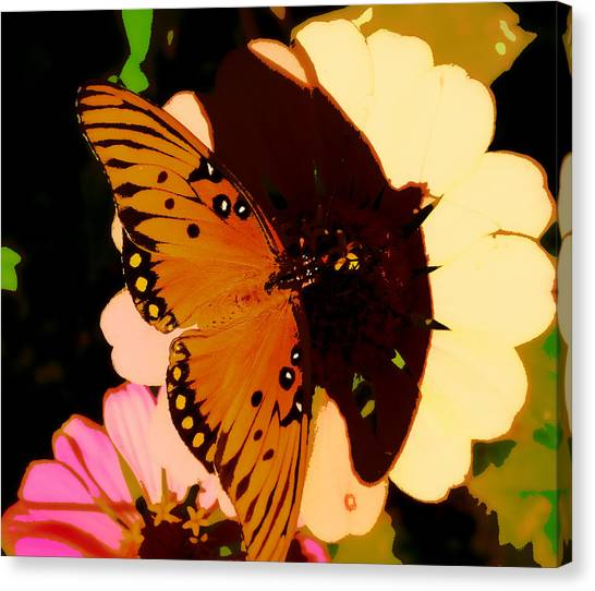 Butterfly Shadows Canvas Print by Dottie Dees