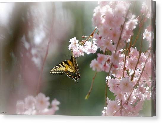 Butterfly With Misty Pink Canvas Print by Molly Dean