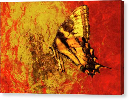 Analog Canvas Print - Butterfly Yellow Orange Red by Jack Zulli