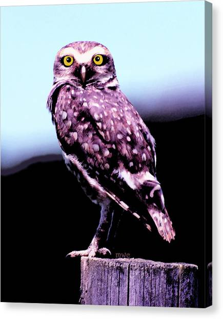 Canvas Print featuring the painting Burrowing Owl by Marian Cates