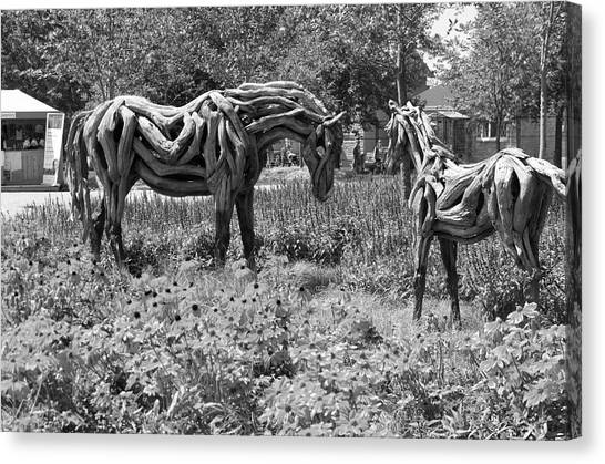 Gatineau Park Canvas Print - Bw Of Odyssey The Horse And Hope The Colt Sculptures Made Of Driftwood by Bob Corson