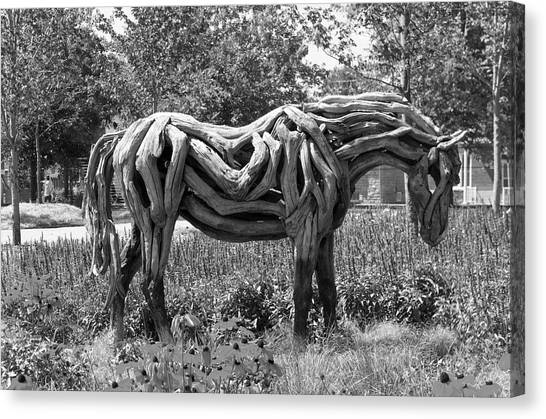 Gatineau Park Canvas Print - Bw Of Odyssey The Horse Sculpture Made Of Driftwood By Heather Jansch. by Bob Corson