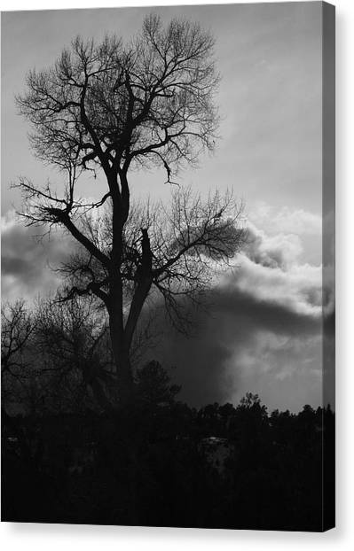 BW1 Canvas Print by Wesley Hanna