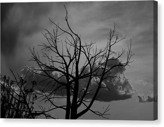 BW2 Canvas Print by Wesley Hanna