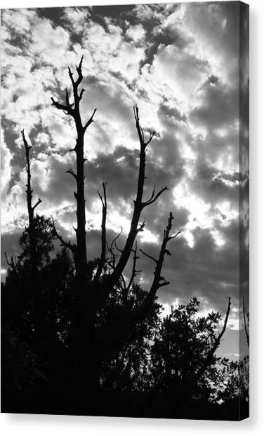 BW9 Canvas Print by Wesley Hanna
