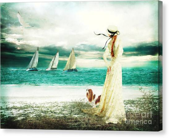 Maltese Canvas Print - By The Sea by Shanina Conway
