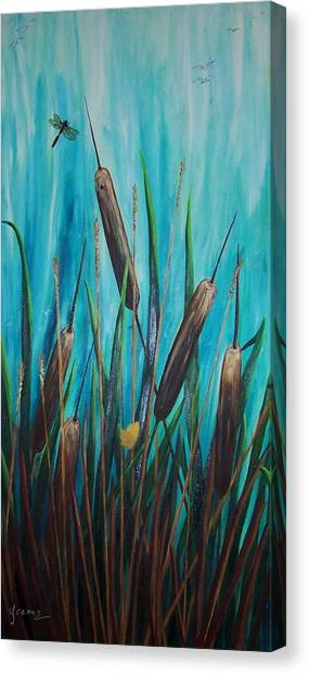 By The Shore Cat -tail Canvas Print by Yvonne Kinney