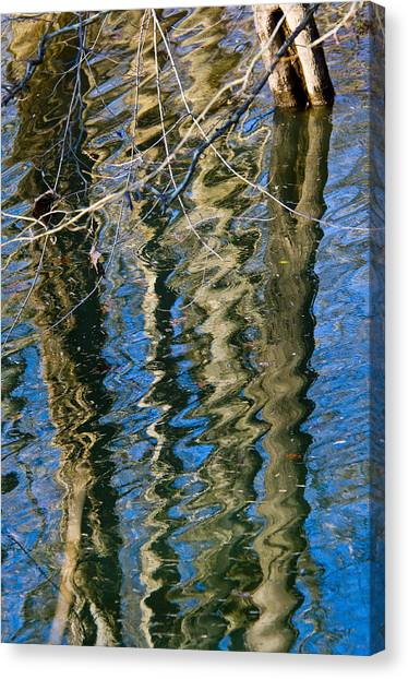C And O Abstract Canvas Print