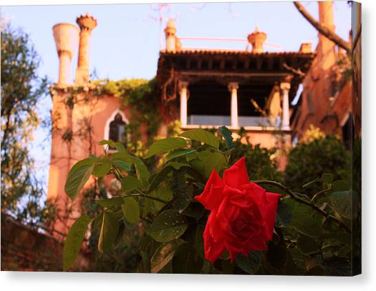 Ca' Dario In Venice With Rose Canvas Print by Michael Henderson