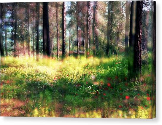 Cabin In The Woods In Menashe Forest Canvas Print