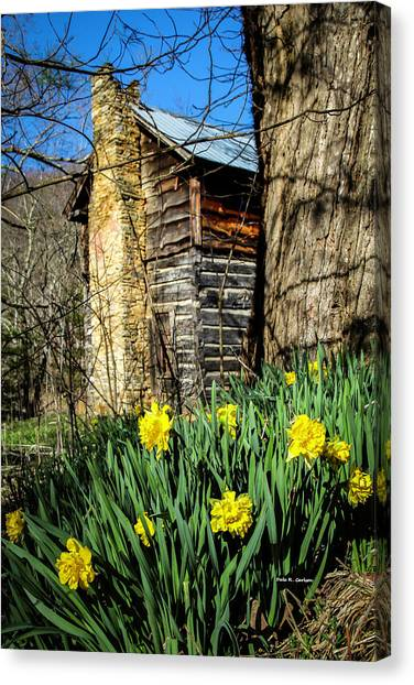 Cabin Spring Canvas Print