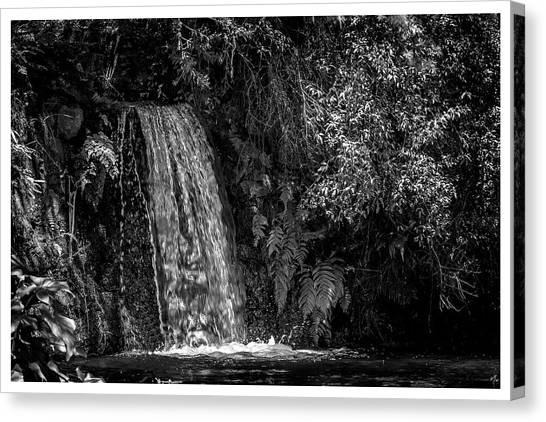 Cachoeira-parque Estadual-campos Do Jordao-sp Canvas Print
