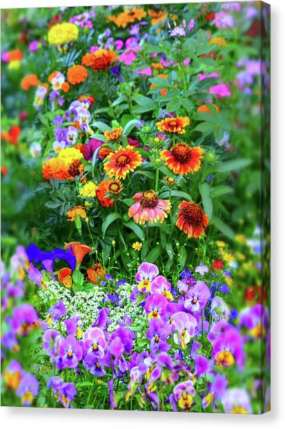 Summer Symphony Of Color Canvas Print
