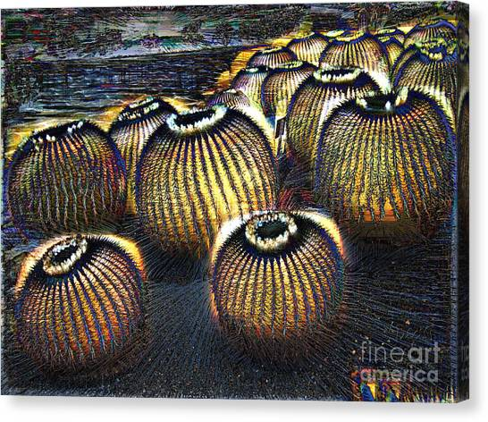 Canvas Print featuring the photograph Cacto Lanterns by Dee Flouton