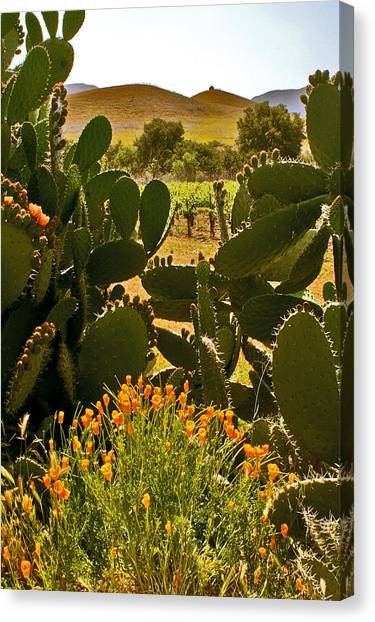 Cactus And Poppies Canvas Print