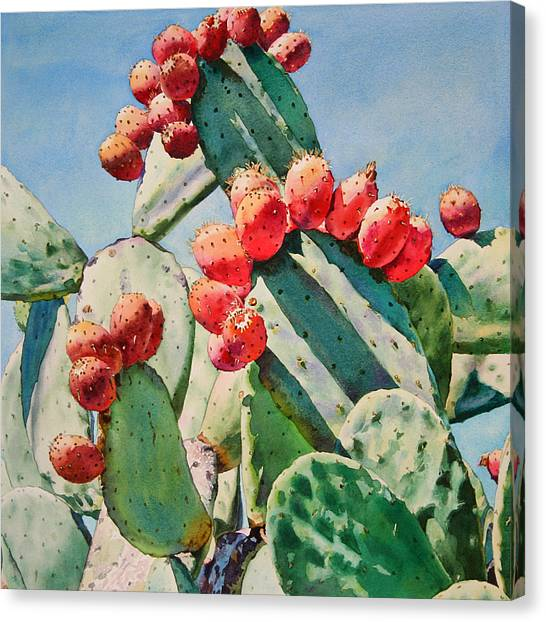 Landscape Canvas Print - Cactus Apples by Kathleen Ballard