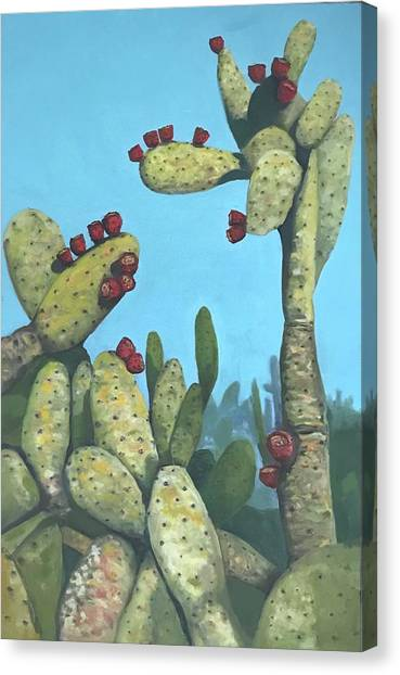 Cactus On Vicky Canvas Print
