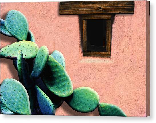 Canvas Print featuring the photograph Cactus by Paul Wear