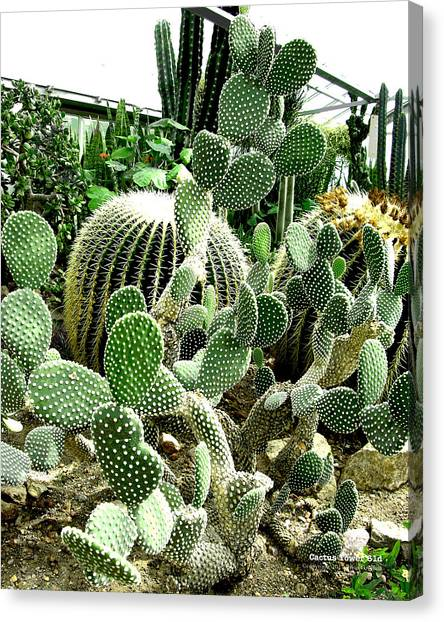 Cactus Tower 61d Canvas Print by Brian Gryphon