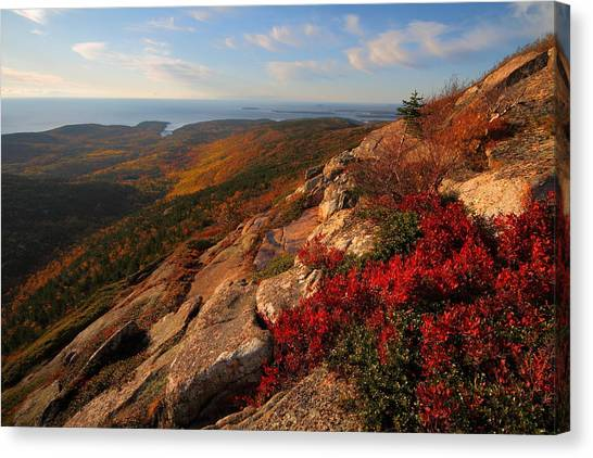 Cadillac Mountain Sunrise At Acadia National Park Canvas Print
