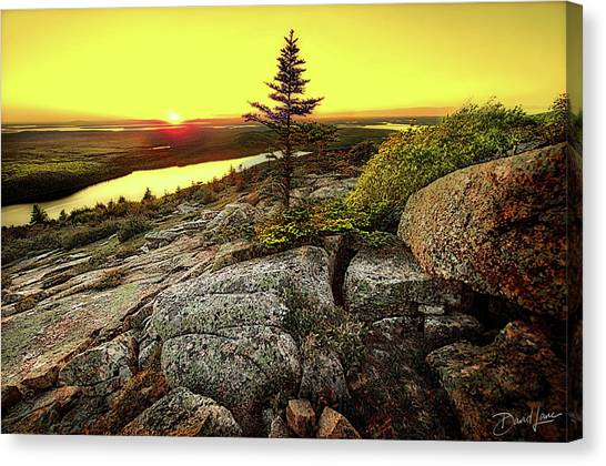 Canvas Print featuring the photograph Cadillac Mountain Sunset by David A Lane