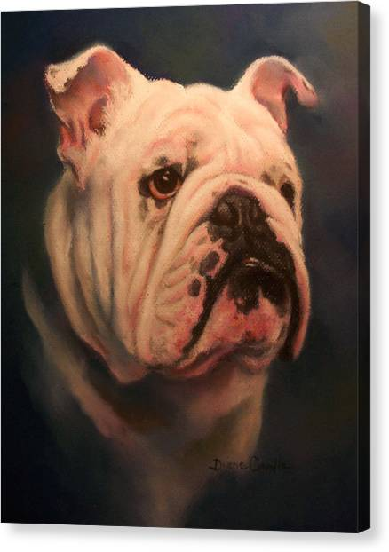 English Bull Dogs Canvas Print - Caesar by Diane Caudle