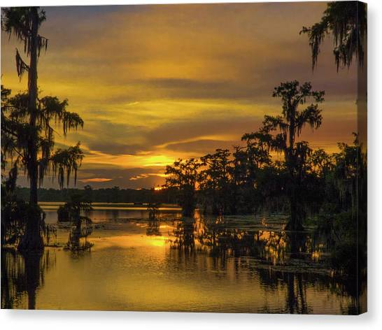 Cajun Gold Canvas Print