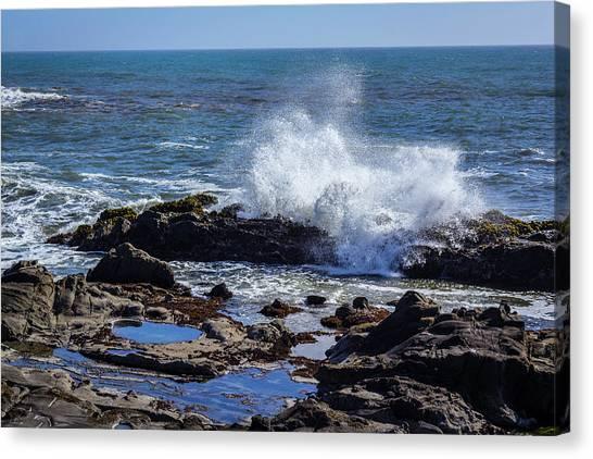 Wave Crashing On California Coast Canvas Print