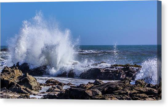 Wave Crashing On California Coast Canvas Print