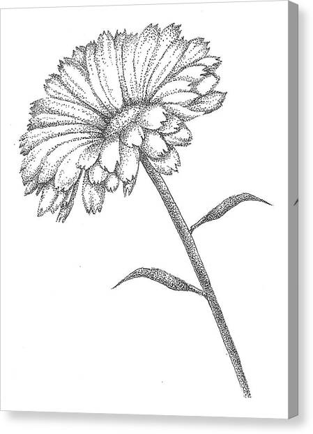 Pointillism Canvas Print - Calendula by Christy Beckwith