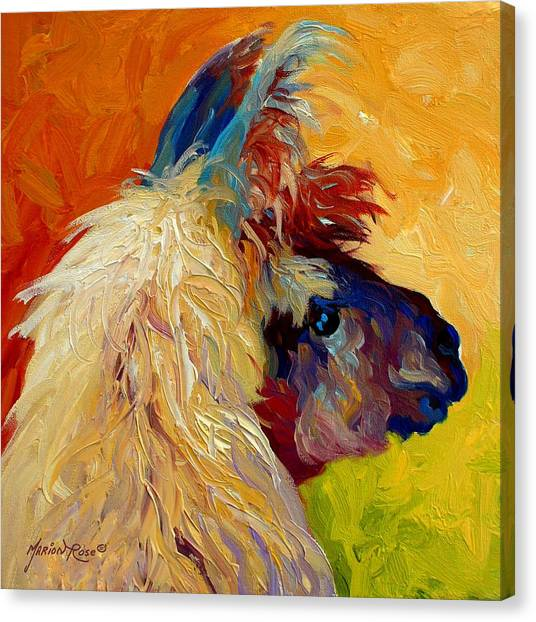 Ewe Canvas Print - Calico Llama by Marion Rose