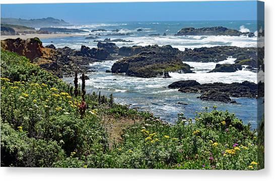 California Coast No. 9-1 Canvas Print