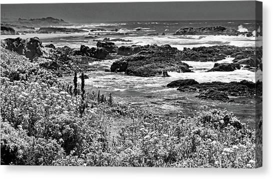 California Coast No. 9-2 Canvas Print