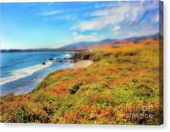 California Coast Wildflowers On Cliffs Ap Canvas Print by Dan Carmichael