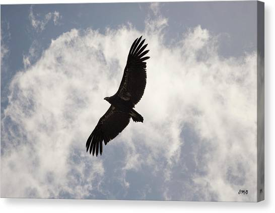 Condors Canvas Print - California Condor In Flight by David Gordon
