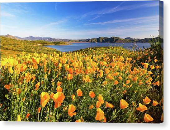 Canvas Print featuring the photograph California Dreamin by Tassanee Angiolillo