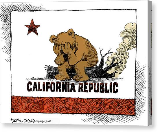 Canvas Print featuring the drawing California Fire Bear Grieves by Daryl Cagle