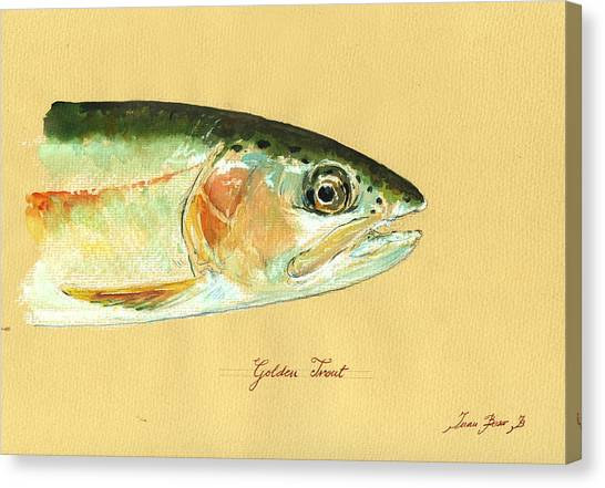 Fly Fishing Canvas Print - California Golden Trout by Juan  Bosco