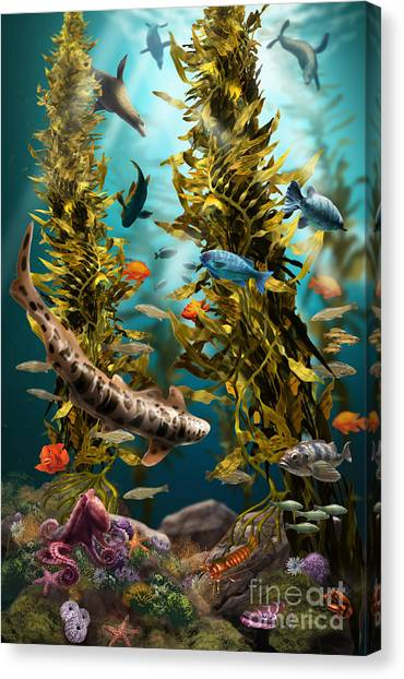 Kelp Forest Canvas Print - California Kelp Forest by Jim Dowdalls