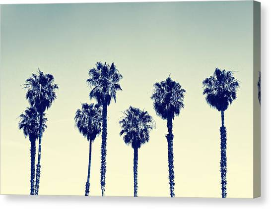 Horizontal Canvas Print - California Palm Trees by Anna Floridia