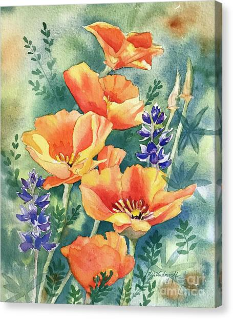 California Poppies In Bloom Canvas Print