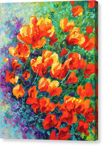 Irises Canvas Print - California Poppies by Marion Rose